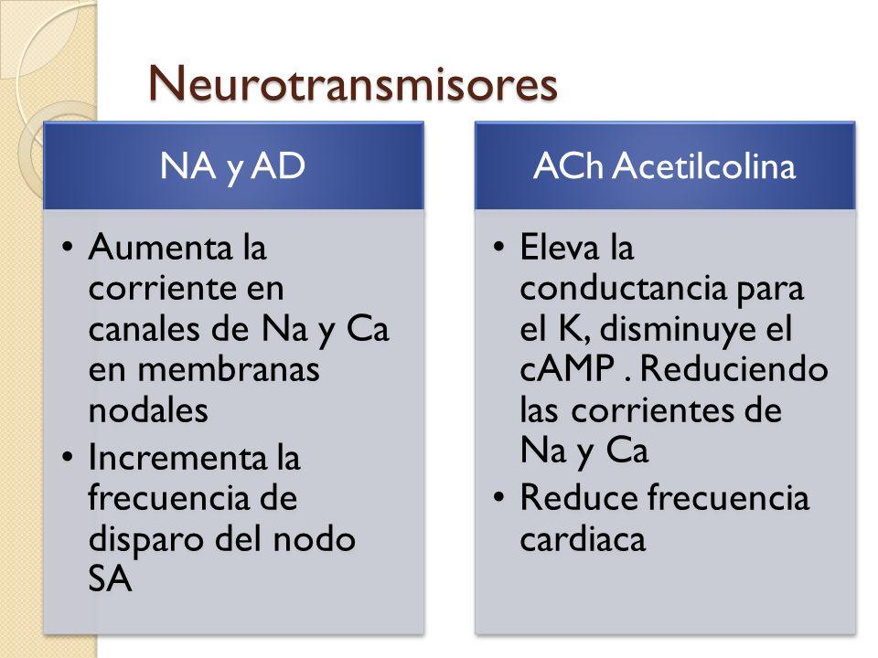 Neurotransmisores NA y AD