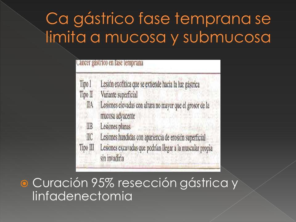 Ca gástrico fase temprana se limita a mucosa y submucosa