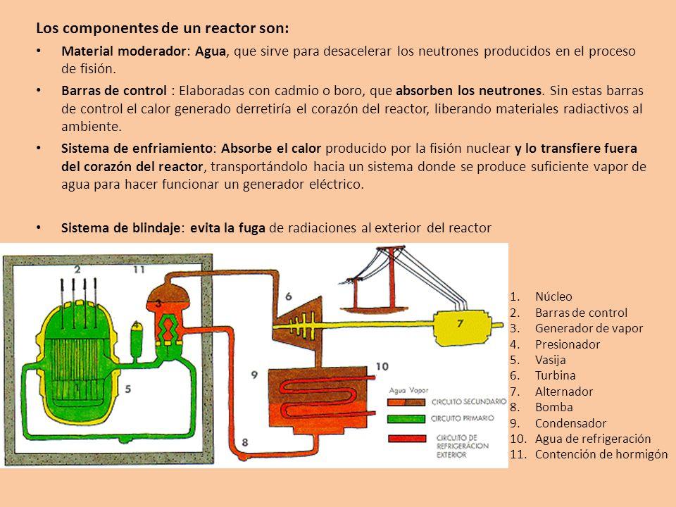 Los componentes de un reactor son: