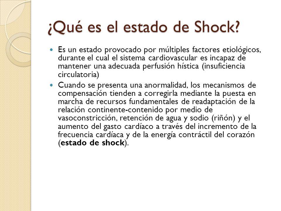 ¿Qué es el estado de Shock