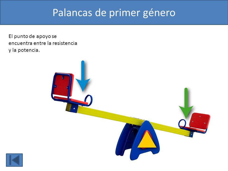 Famoso Palancas De 1ª Clase Cresta - Imágenes de Anatomía Humana ...