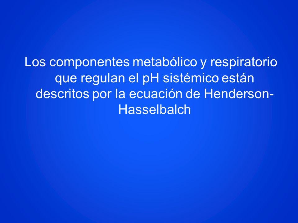 Los componentes metabólico y respiratorio que regulan el pH sistémico están descritos por la ecuación de Henderson-Hasselbalch