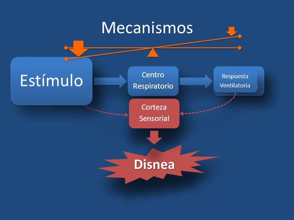 Mecanismos Estímulo Disnea Estímulo Centro Respiratorio Respuesta