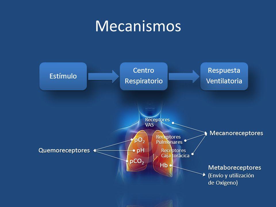 Mecanismos Estímulo Centro Respiratorio Respuesta Ventilatoria pH pO2