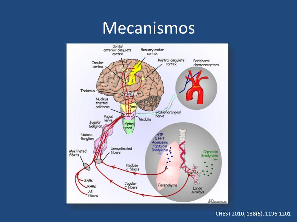 Mecanismos CHEST 2010; 138(5): 1196-1201