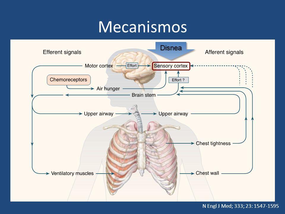 Mecanismos Disnea N Engl J Med; 333; 23: 1547-1595