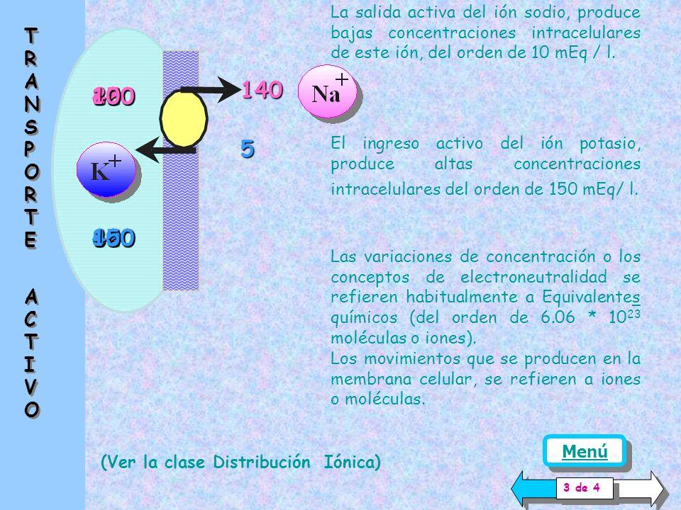La salida activa del ión sodio, produce bajas concentraciones intracelulares de este ión, del orden de 10 mEq / l.