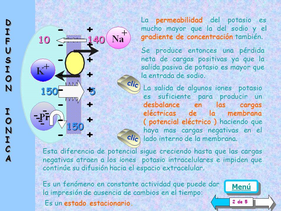 - + - + - + - + - + - + - + - + 10 140 150 5 150 DIFUSION IONICA