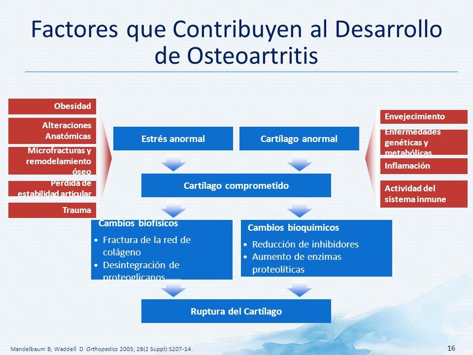 Factores que Contribuyen al Desarrollo de Osteoartritis