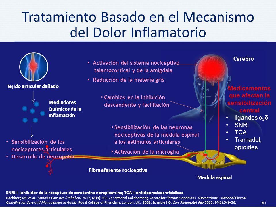Tratamiento Basado en el Mecanismo del Dolor Inflamatorio
