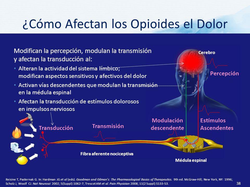 ¿Cómo Afectan los Opioides el Dolor