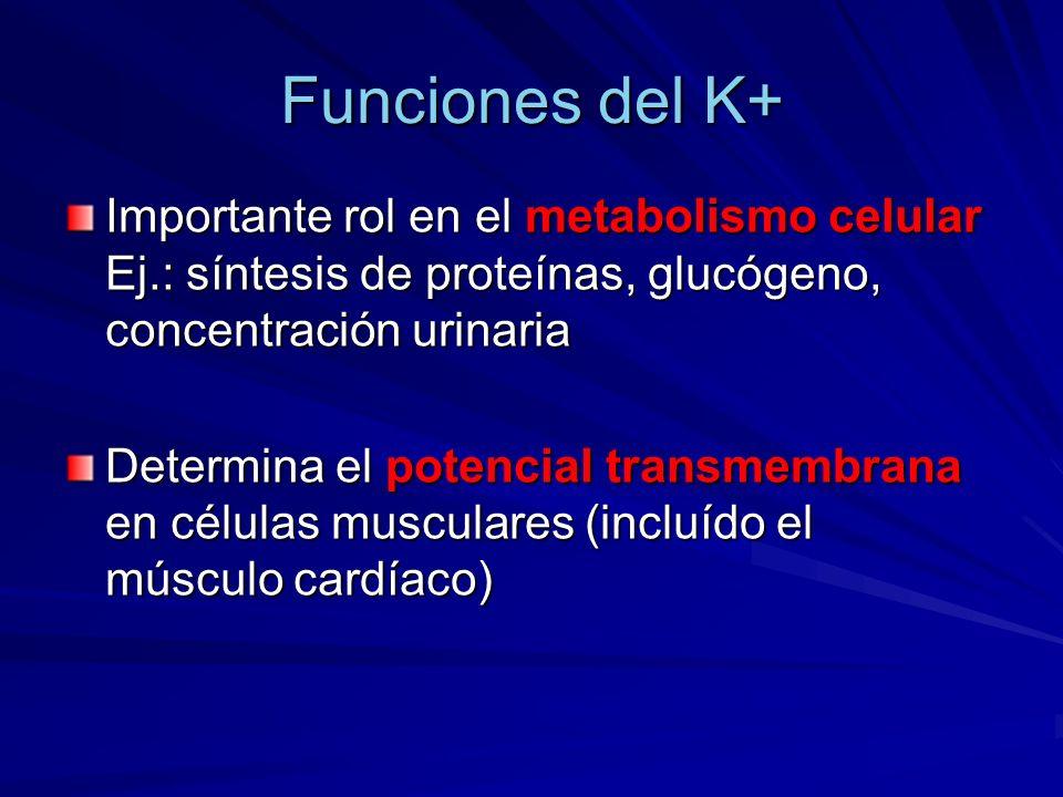 Funciones del K+ Importante rol en el metabolismo celular Ej.: síntesis de proteínas, glucógeno, concentración urinaria.