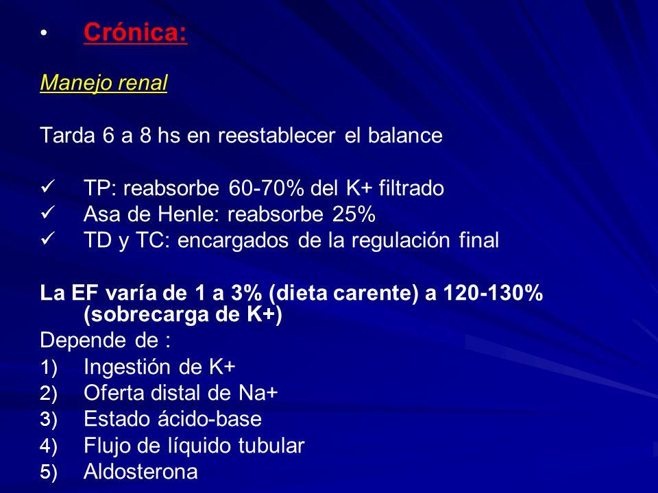 Crónica: Manejo renal Tarda 6 a 8 hs en reestablecer el balance