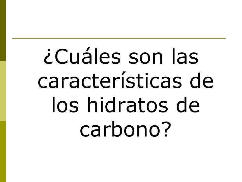 ¿Cuáles son las características de los hidratos de carbono