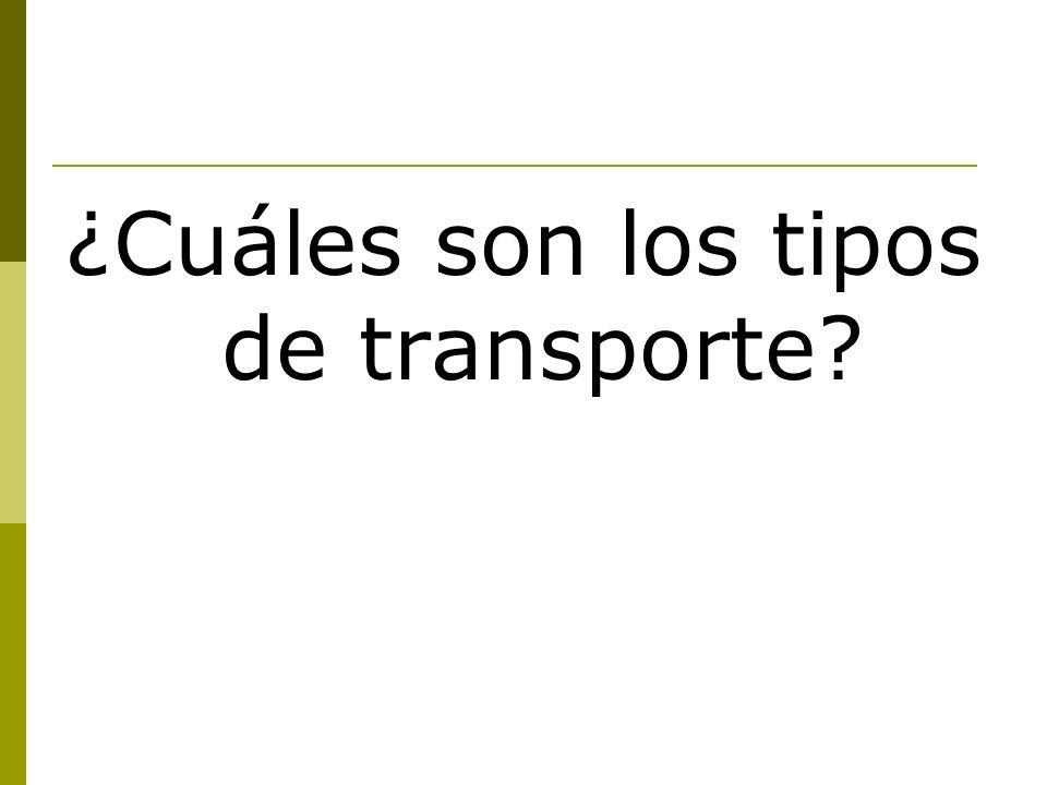 ¿Cuáles son los tipos de transporte