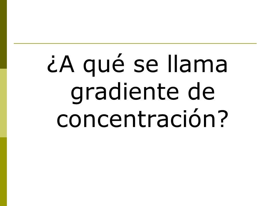 ¿A qué se llama gradiente de concentración