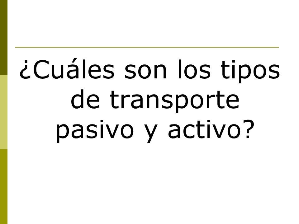 ¿Cuáles son los tipos de transporte pasivo y activo