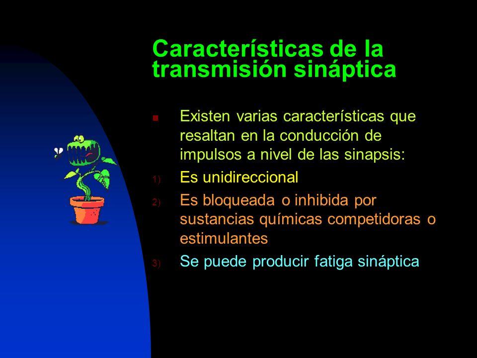 Características de la transmisión sináptica