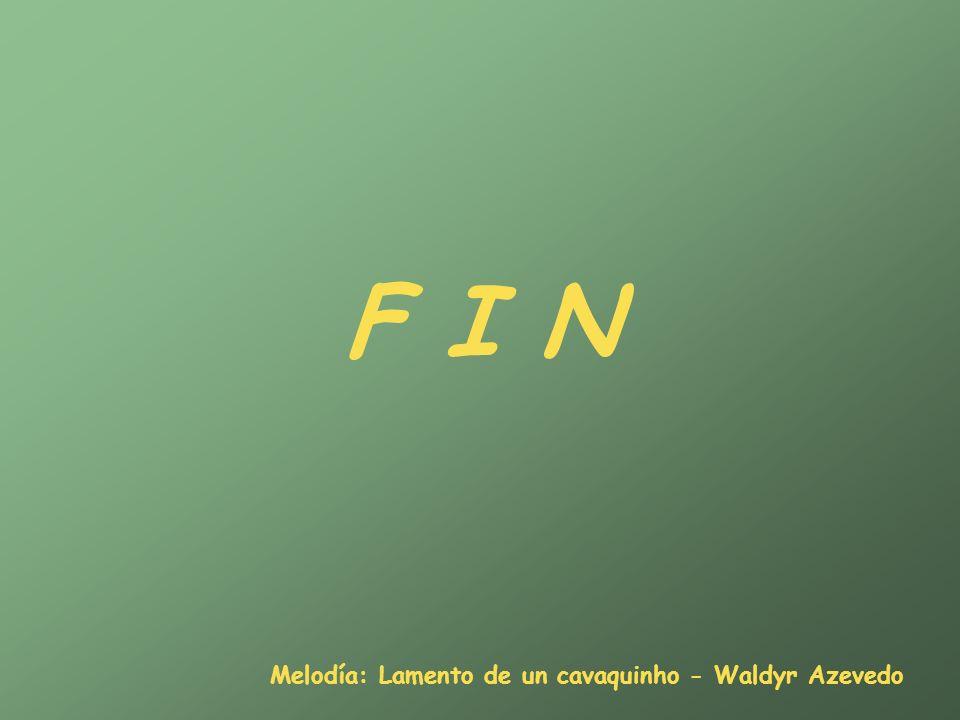F I N Melodía: Lamento de un cavaquinho - Waldyr Azevedo