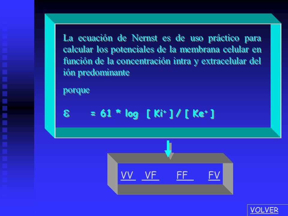La ecuación de Nernst es de uso práctico para calcular los potenciales de la membrana celular en función de la concentración intra y extracelular del ión predominante