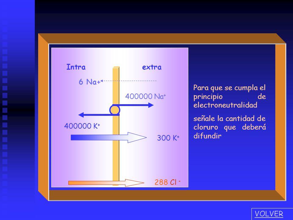 Intra extra 400000 Na+ 400000 K+ 6 Na+ 300 K+ Para que se cumpla el principio de electroneutralidad.