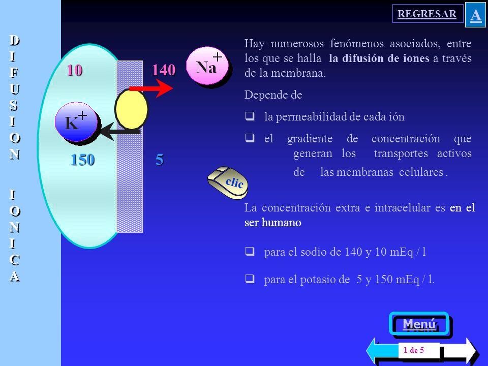 REGRESAR A. DIFUSION. IONICA. Hay numerosos fenómenos asociados, entre los que se halla la difusión de iones a través de la membrana.