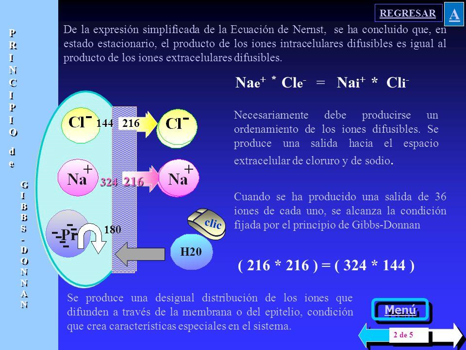 A Nae+ * Cle- = Nai+ * Cli- ( 216 * 216 ) = ( 324 * 144 )