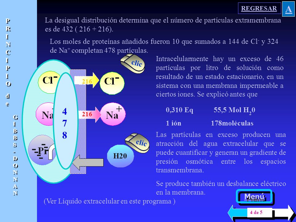 REGRESAR A. PRINCIPIO. de. GIBBS- DONNAN. La desigual distribución determina que el número de partículas extramembrana es de 432 ( 216 + 216).