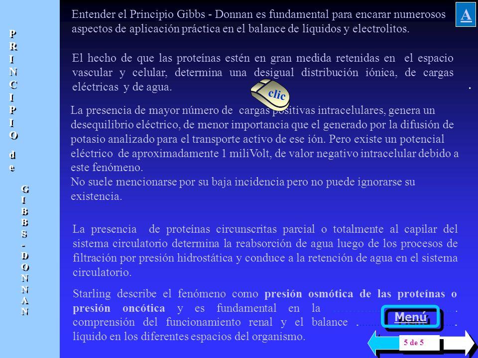 Entender el Principio Gibbs - Donnan es fundamental para encarar numerosos aspectos de aplicación práctica en el balance de líquidos y electrolitos.