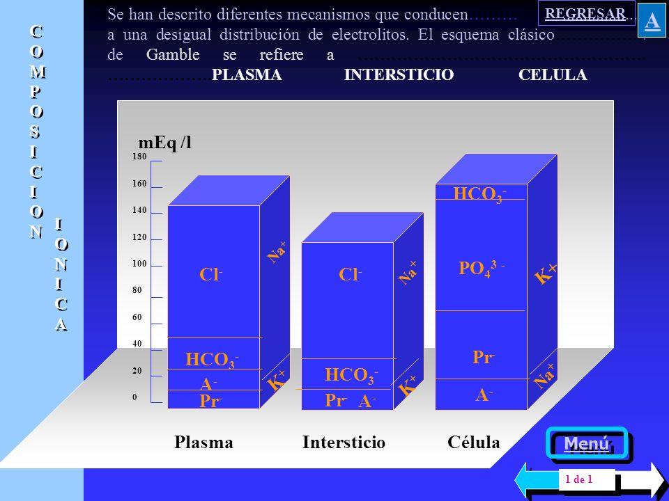 A Plasma Pr- A- HCO3- Cl- K+ Cl - Intersticio mEq /l PO43 - Célula