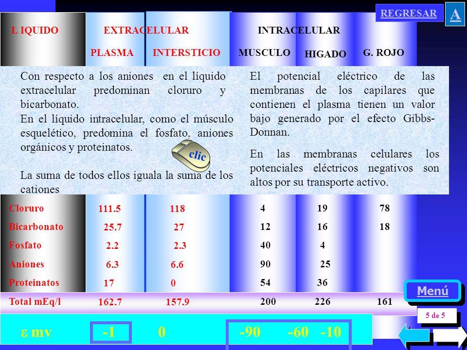 REGRESAR A. Cloruro. Bicarbonato. Fosfato. Aniones. Proteinatos. Total mEq/l. 111.5 118.