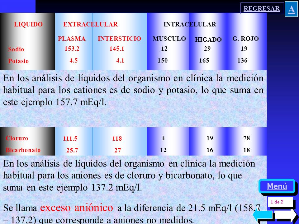 REGRESAR A. LIQUIDO EXTRACELULAR. INTRACELULAR. PLASMA. INTERSTICIO. MUSCULO. HIGADO.
