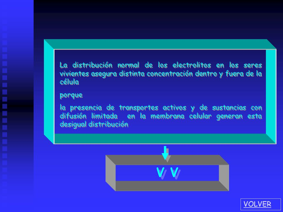La distribución normal de los electrolitos en los seres vivientes asegura distinta concentración dentro y fuera de la célula