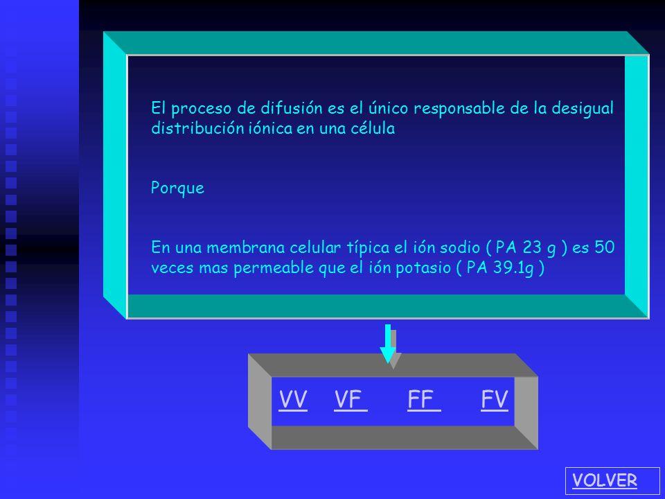 El proceso de difusión es el único responsable de la desigual distribución iónica en una célula