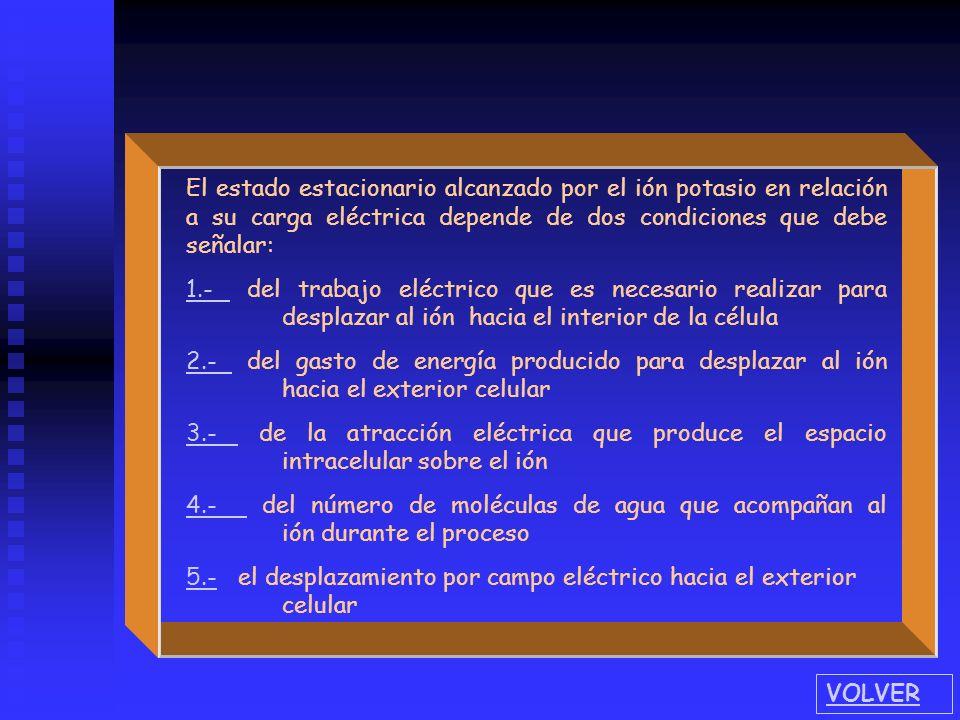 El estado estacionario alcanzado por el ión potasio en relación a su carga eléctrica depende de dos condiciones que debe señalar: