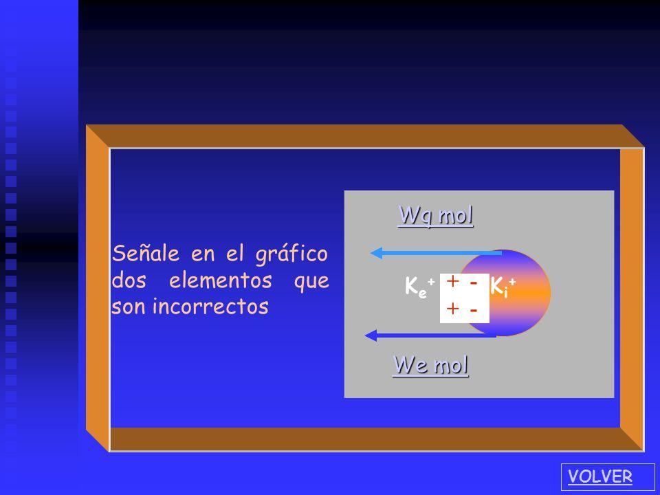 Señale en el gráfico dos elementos que son incorrectos Wq mol
