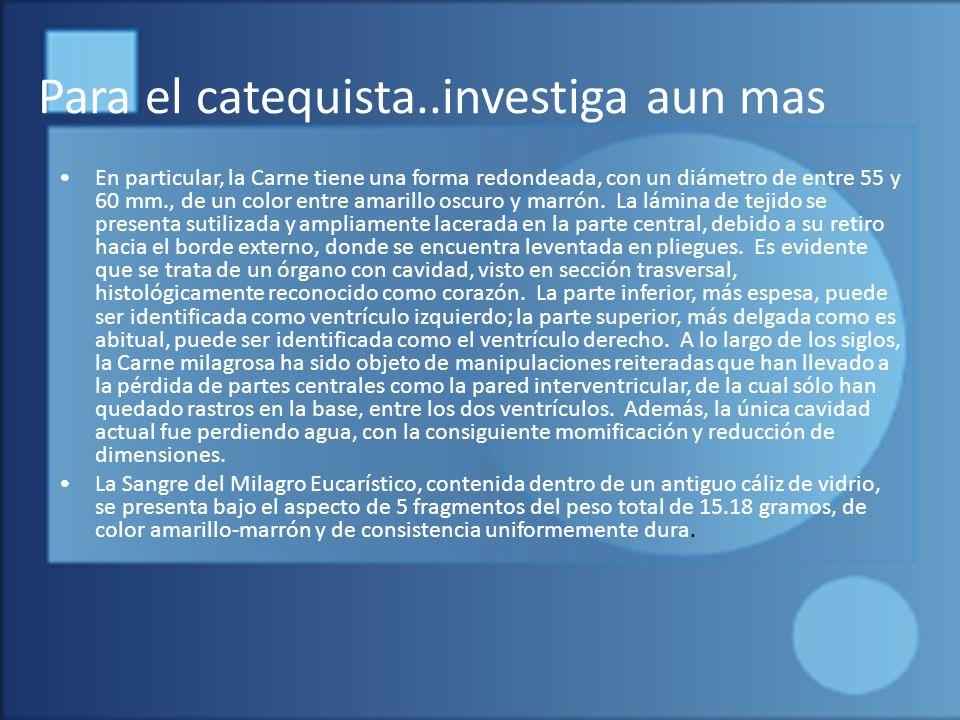 Para el catequista..investiga aun mas