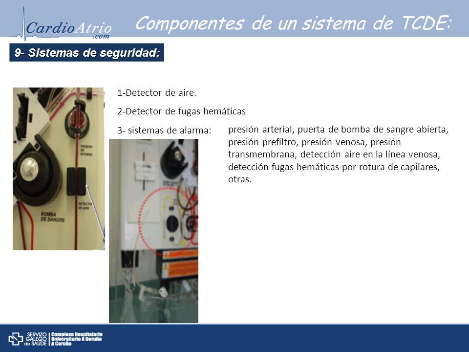 9- Sistemas de seguridad: