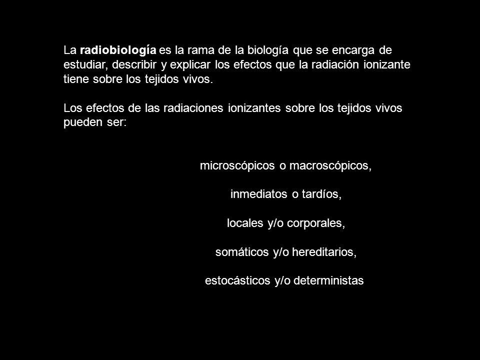 microscópicos o macroscópicos, inmediatos o tardíos,