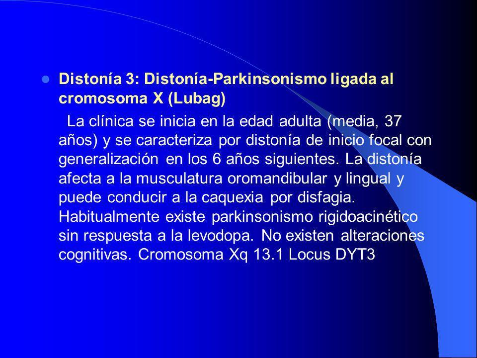 Distonía 3: Distonía-Parkinsonismo ligada al cromosoma X (Lubag)