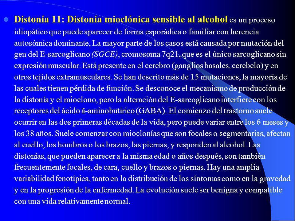Distonía 11: Distonía mioclónica sensible al alcohol es un proceso idiopático que puede aparecer de forma esporádica o familiar con herencia autosómica dominante, La mayor parte de los casos está causada por mutación del gen del E-sarcoglicano (SGCE), cromosoma 7q21, que es el único sarcoglicano sin expresión muscular.
