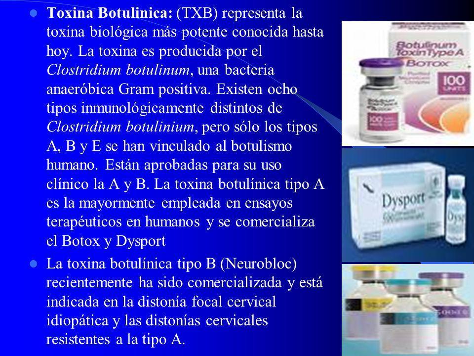 Toxina Botulinica: (TXB) representa la toxina biológica más potente conocida hasta hoy. La toxina es producida por el Clostridium botulinum, una bacteria anaeróbica Gram positiva. Existen ocho tipos inmunológicamente distintos de Clostridium botulinium, pero sólo los tipos A, B y E se han vinculado al botulismo humano. Están aprobadas para su uso clínico la A y B. La toxina botulínica tipo A es la mayormente empleada en ensayos terapéuticos en humanos y se comercializa el Botox y Dysport