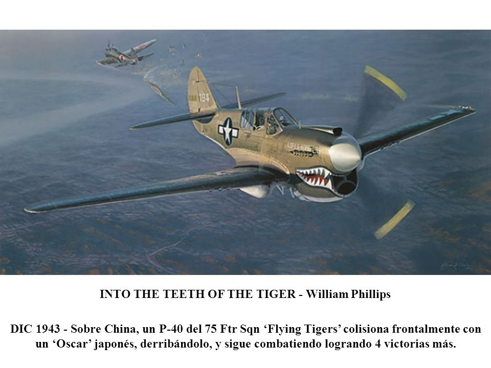 INTO THE TEETH OF THE TIGER - William Phillips