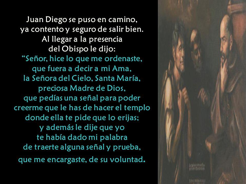 Juan Diego se puso en camino, ya contento y seguro de salir bien.