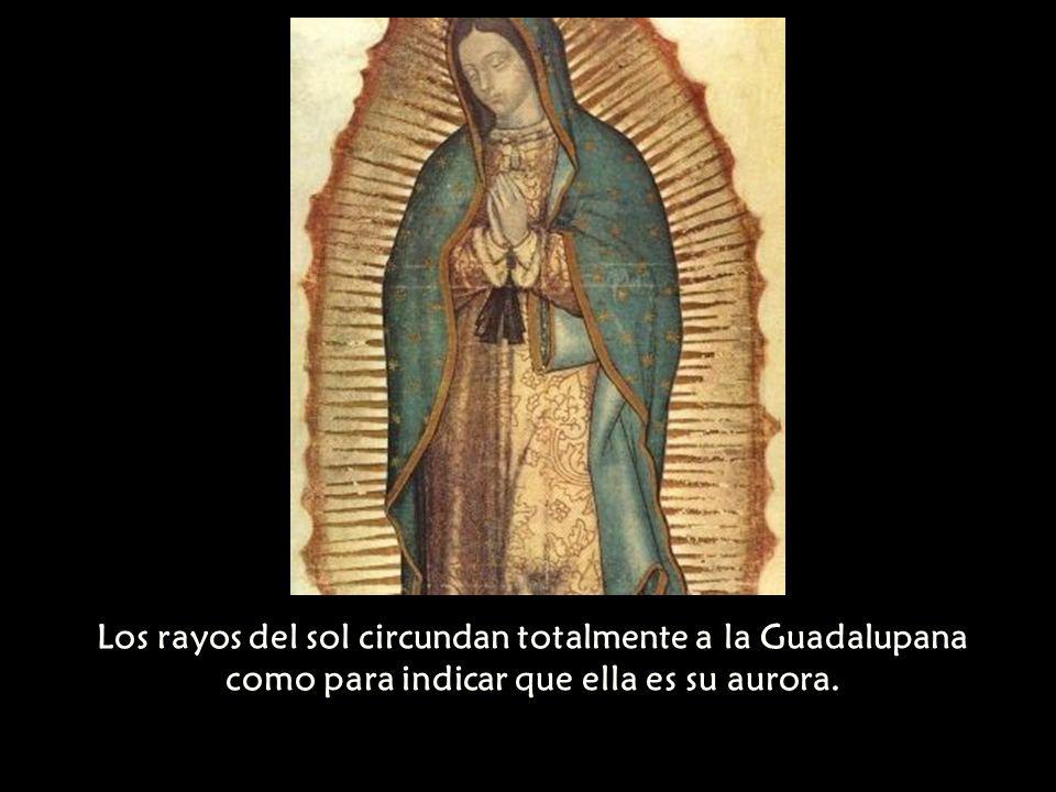 Los rayos del sol circundan totalmente a la Guadalupana como para indicar que ella es su aurora.