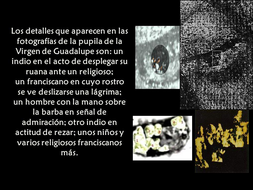 un franciscano en cuyo rostro se ve deslizarse una lágrima;