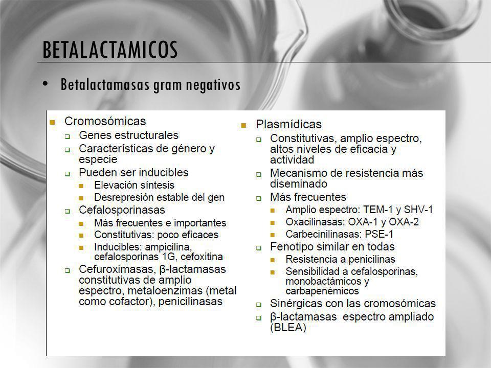 betalactamicos Betalactamasas gram negativos
