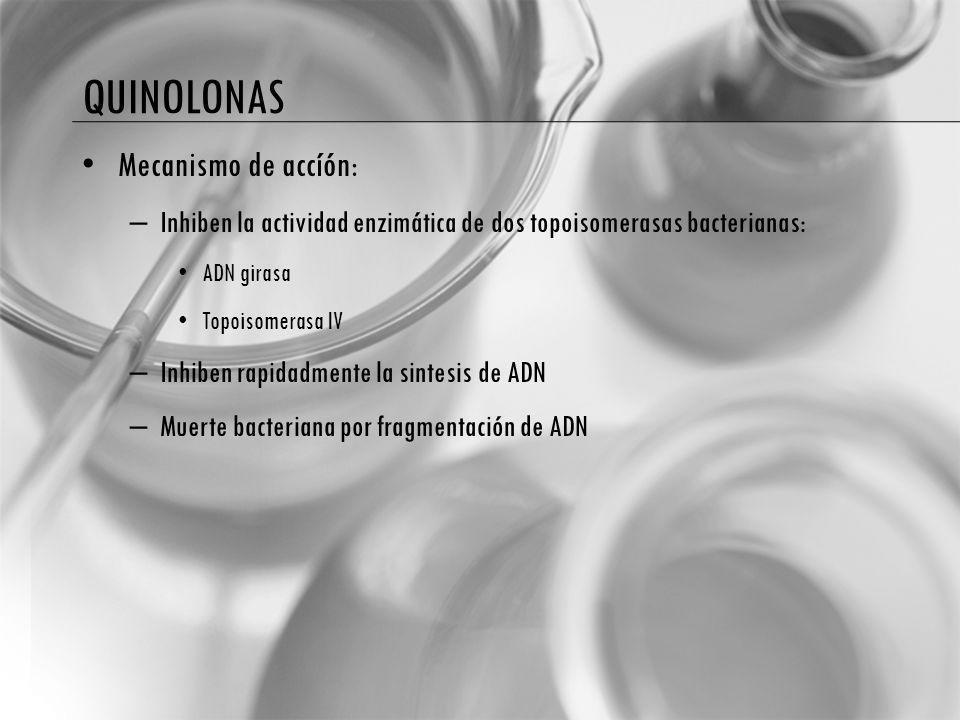 quinolonas Mecanismo de accíón: