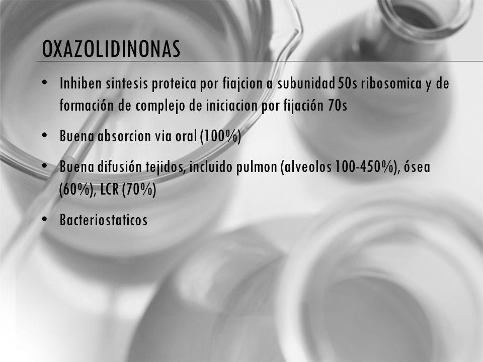 oxazolidinonas Inhiben sintesis proteica por fiajcion a subunidad 50s ribosomica y de formación de complejo de iniciacion por fijación 70s.