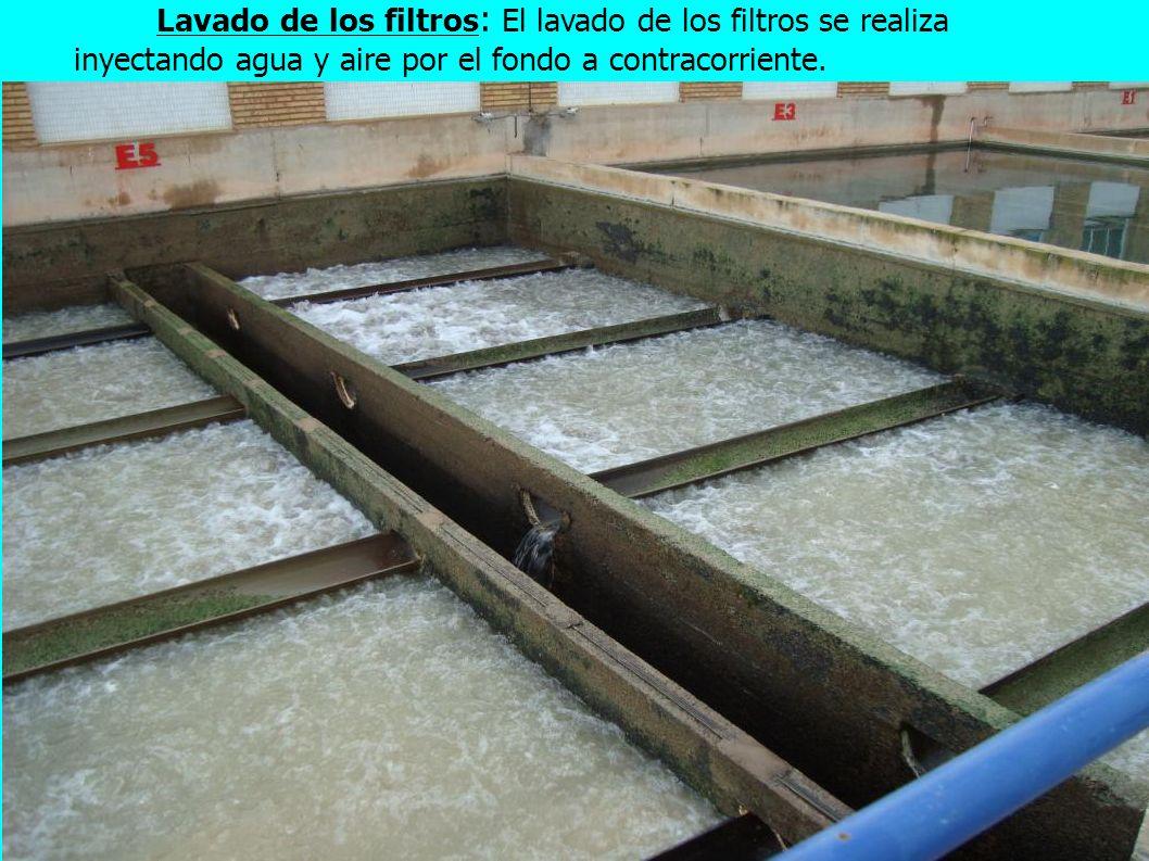 Lavado de los filtros: El lavado de los filtros se realiza inyectando agua y aire por el fondo a contracorriente.